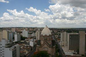 Automobilių nuoma Ararakvara, Brazilija