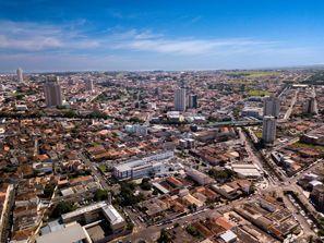 Automobilių nuoma Franca, Brazilija