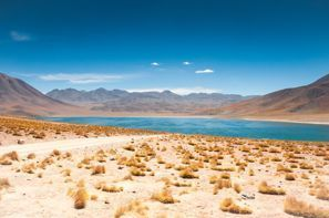 Automobilių nuoma San Pedro de Atacama, Čilė