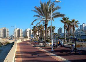 Automobilių nuoma Ašdodas, Izraelis