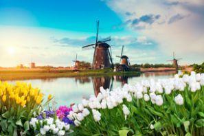 Auto nuoma Olandija