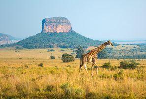 Automobilių nuoma Ellisras, Pietų Afrika