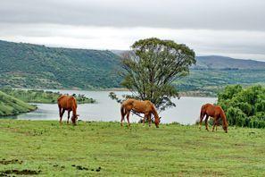 Automobilių nuoma Estcourt, Pietų Afrika