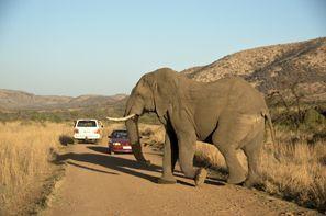 Automobilių nuoma Klerksdorpas, Pietų Afrika