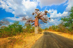 Automobilių nuoma Makhado, Pietų Afrika
