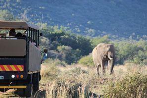 Automobilių nuoma Vryburg, Pietų Afrika
