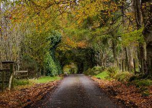 Automobilių nuoma Omagh, Šiaurės Airija